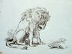 Lion and Tortoise 1835