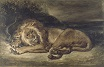 Lion and Snake 1846
