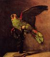 The Green Parrot 1886