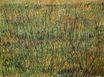 Pasture in Bloom 1887