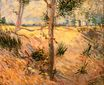 Trees in a Field on a Sunny Day 1887