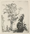 Rembrandt van Rijn - Sketch of a Tree 1638