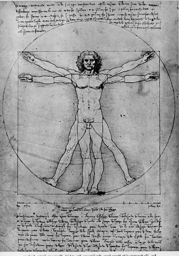 Leonardo da Vinci, picture The proportions of the human figure. The ...
