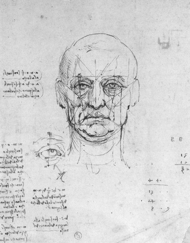 Leonardo da Vinci - Study on the proportions of head and eyes