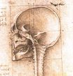 Leonardo da Vinci - View of a Skull 1489