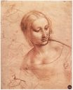 Leonardo da Vinci - Study for Madonna with the Yarnwinder 1501