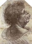 Leonardo da Vinci - A Grotesque Head Grotesque head 1502