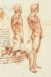 Leonardo da Vinci - The anatomy of a male nude and a battle scene 1505